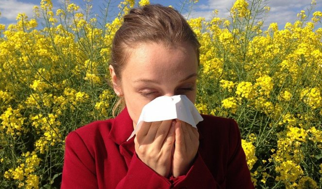 KAKO DA PREPOZNATE NA ŠTA STE ALERGIČNI? Počinje sezona kada većina nas ima ove simptome!