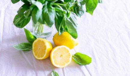 DOBAR TRIK! Prepoznajte koji limun je sočniji - OTKRIVAMO VAM KAKO, BAŠ JE LAKO!