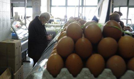 Postoji važan razlog zašto kartone od jaja treba ODMAH BACITI!