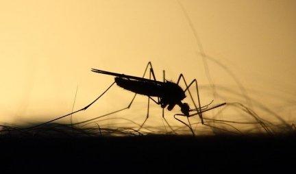 VIŠE NAM NEĆE PITI KRV! Naučnici našli rešenje da ljudi postanu nevidljivi za komarce!
