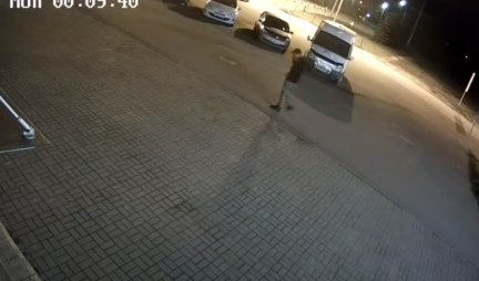 MEDVED UMALO DA MU OTKINE RUKU! Mladić je šetao noću kroz grad, a onda je usledio DIVLJAČKI NAPAD! (VIDEO)