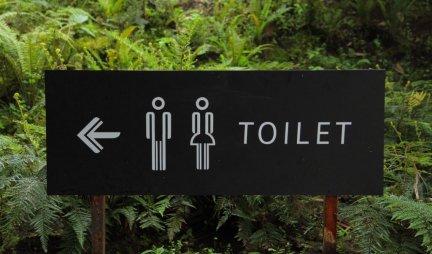 SAMO JAPANCIMA ovo može da padne na pamet: Da li biste ušli u ovaj PROVIDNI javni TOALET? (FOTO)