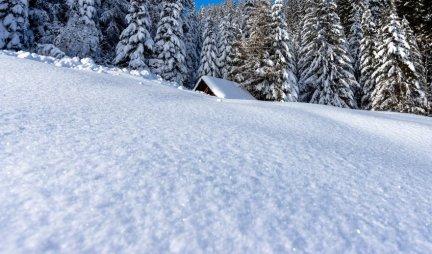 ZIMSKA ČAROLIJA! Oduševiće vas šta ovaj pas ume da napravi od snega!